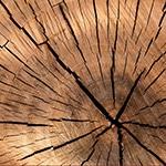 lumber-84678_640